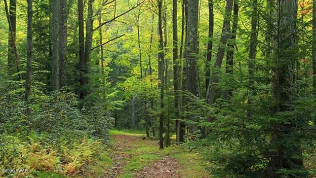 Mountain Laurel Dr 5910 Ln, Long Pond, PA 18334 (MLS #20-781) :: McAteer & Will Estates | Keller Williams Real Estate
