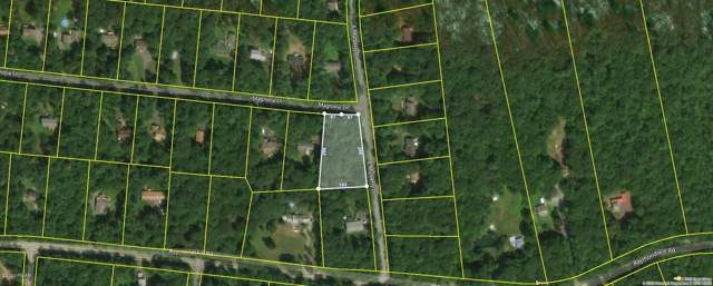 100 Magnolia Ln, Milford, PA 18337 (MLS #20-81) :: McAteer & Will Estates | Keller Williams Real Estate