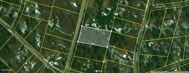 266 Raymondskill Rd, Milford, PA 18337 (MLS #20-85) :: McAteer & Will Estates | Keller Williams Real Estate