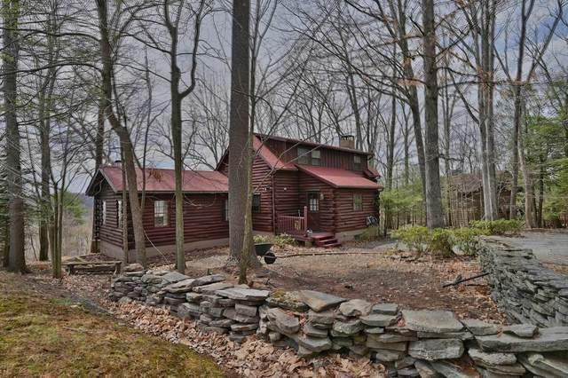 5 Vista Ct, Lakeville, PA 18438 (MLS #21-1180) :: McAteer & Will Estates   Keller Williams Real Estate