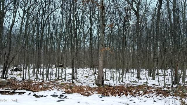 Lot 73 Stone Dr, Hawley, PA 18428 (MLS #21-168) :: McAteer & Will Estates | Keller Williams Real Estate