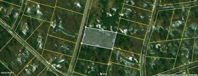 Lot 1589 Raymondskill Rd, Milford, PA 18337 (MLS #21-184) :: McAteer & Will Estates | Keller Williams Real Estate
