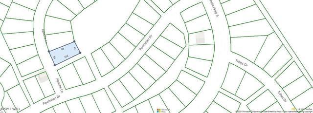 103 Apache Ln, Shohola, PA 18458 (MLS #21-2299) :: McAteer & Will Estates | Keller Williams Real Estate