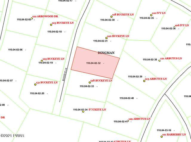 Lot 260 Buckeye Ln, Milford, PA 18337 (MLS #21-3677) :: McAteer & Will Estates | Keller Williams Real Estate