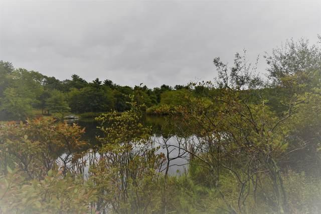 Lot 259 Lakeside Dr, Dingmans Ferry, PA 18328 (MLS #21-502) :: McAteer & Will Estates | Keller Williams Real Estate