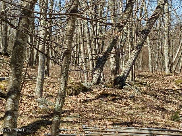 136 Dogwood Dr, Hawley, PA 18428 (MLS #21-783) :: McAteer & Will Estates | Keller Williams Real Estate