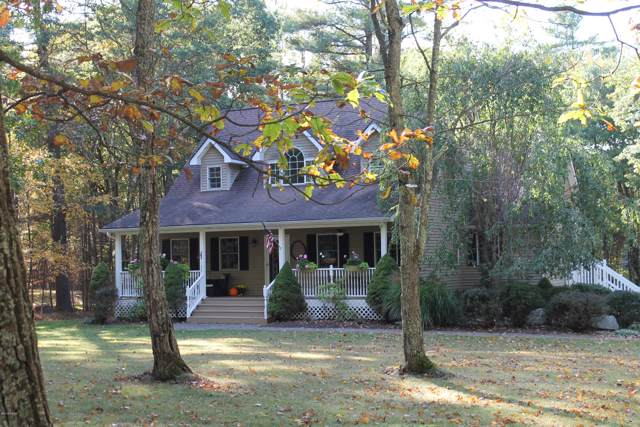 133 Spicebush Ln, Milford, PA 18337 (MLS #19-4293) :: McAteer & Will Estates | Keller Williams Real Estate