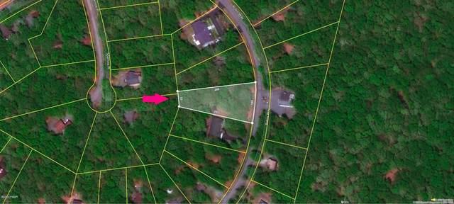 Address Not Published, Lackawaxen, PA 18435 (MLS #20-1294) :: McAteer & Will Estates | Keller Williams Real Estate