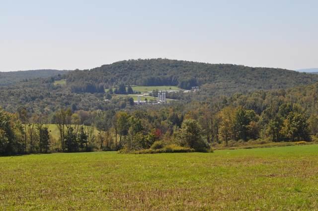 785 Egypt Rd, Honesdale, PA 18431 (MLS #20-1362) :: McAteer & Will Estates | Keller Williams Real Estate