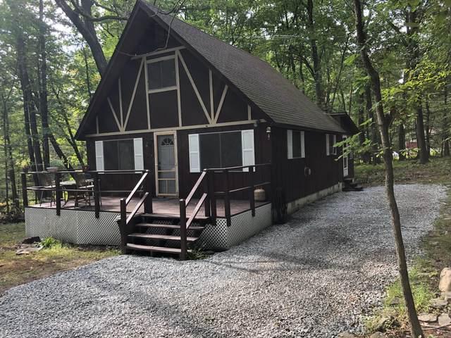 103 Palm Ct, Dingmans Ferry, PA 18328 (MLS #20-3747) :: McAteer & Will Estates | Keller Williams Real Estate