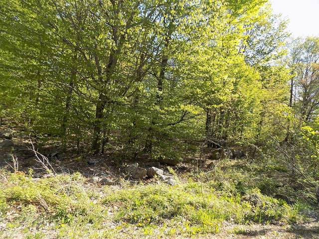 Lot 19 Split Rock Rd, Newfoundland, PA 18445 (MLS #21-1021) :: McAteer & Will Estates | Keller Williams Real Estate
