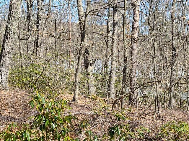 Lot 1405 Seneca Dr., Milford, PA 18337 (MLS #21-449) :: McAteer & Will Estates | Keller Williams Real Estate