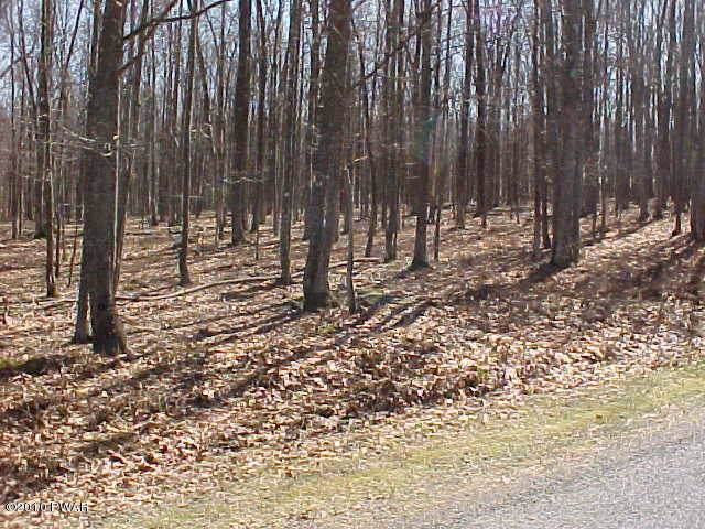 24 Fern Dr, Hawley, PA 18428 (MLS #16-51) :: McAteer & Will Estates | Keller Williams Real Estate