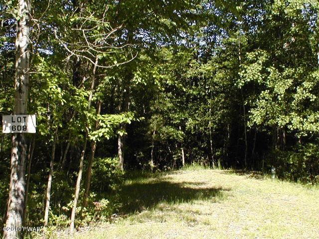 607 Bobcat Dr, Milford, PA 18337 (MLS #16-880) :: McAteer & Will Estates | Keller Williams Real Estate