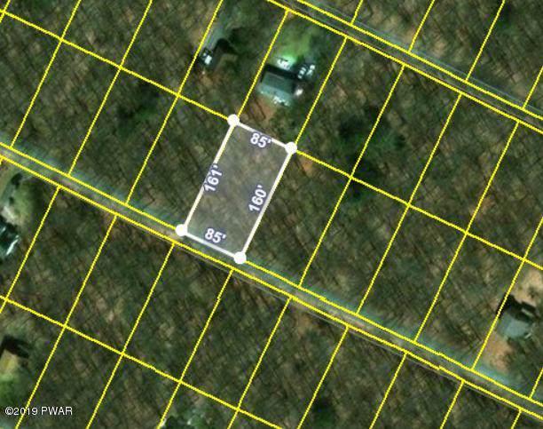 Lot 21 Basswood Dr, Newfoundland, PA 18445 (MLS #18-5064) :: McAteer & Will Estates | Keller Williams Real Estate