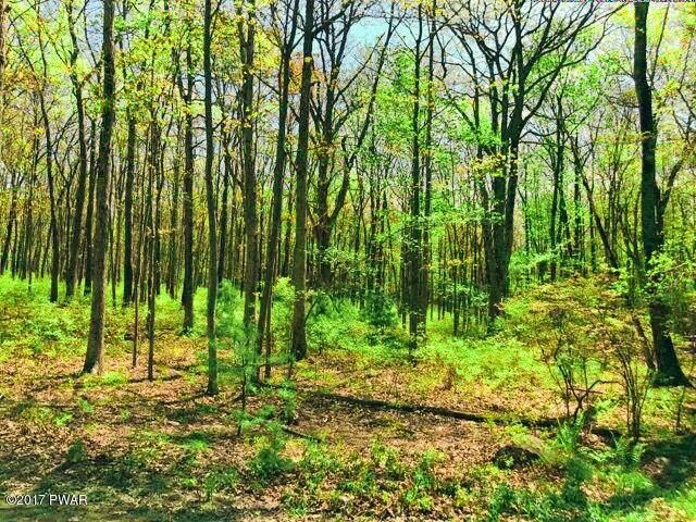 110 Timber Ridge Dr, Shohola, PA 18458 (MLS #19-1232) :: McAteer & Will Estates | Keller Williams Real Estate