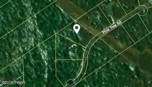Pine Tree Rd, Shohola, PA 18458 (MLS #19-4163) :: McAteer & Will Estates | Keller Williams Real Estate