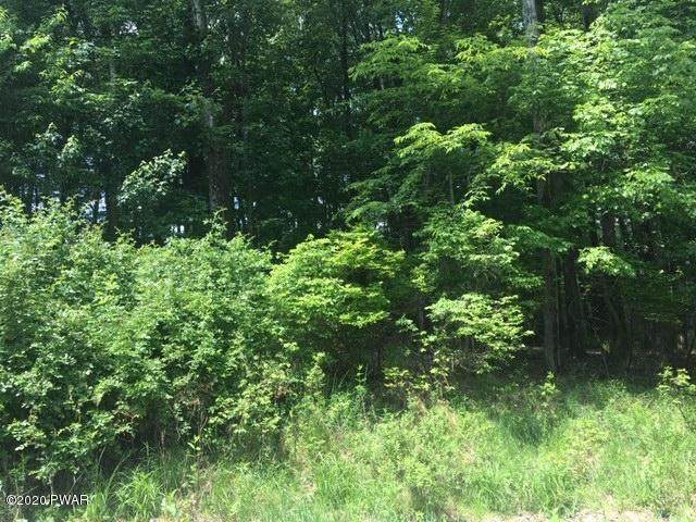 Lot 539 Chipmunk Trl, Hawley, PA 18428 (MLS #20-2868) :: McAteer & Will Estates | Keller Williams Real Estate