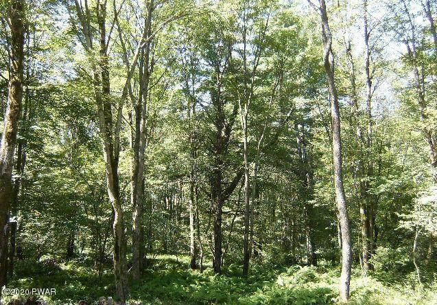Squirrel Tail Ct, Bushkill, PA 18324 (MLS #20-4289) :: McAteer & Will Estates | Keller Williams Real Estate