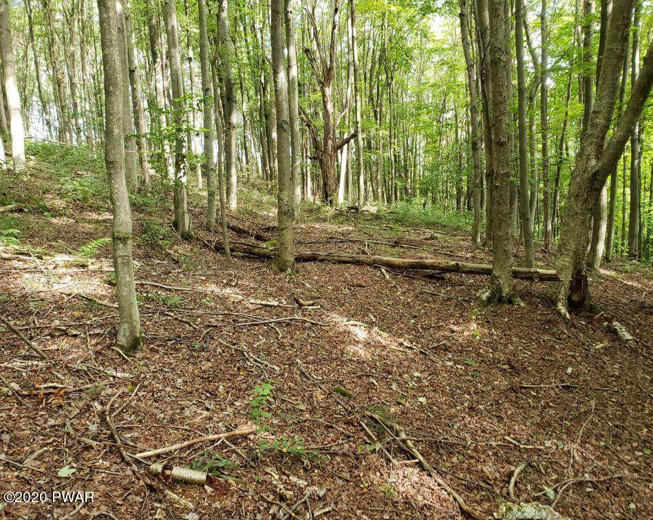 Creek Dr - Photo 1