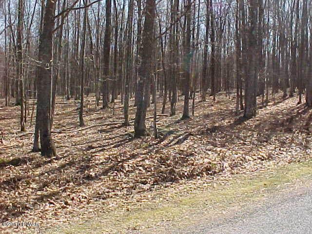 24 Fern Dr, Hawley, PA 18428 (MLS #20-570) :: McAteer & Will Estates | Keller Williams Real Estate