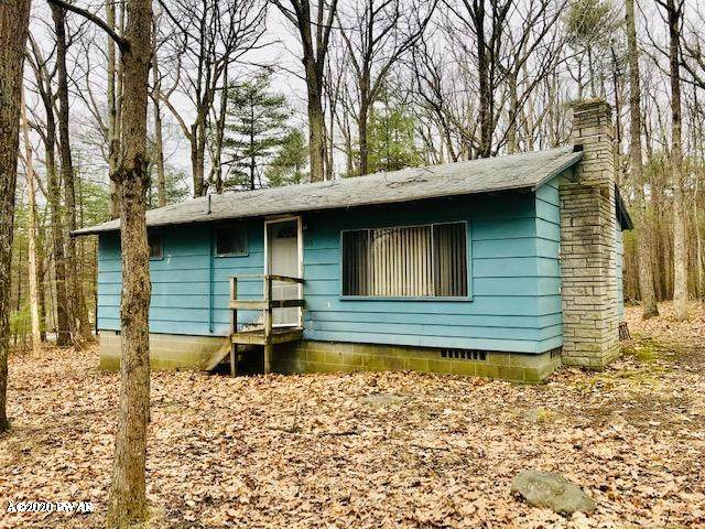 165 Persimmon Dr, Dingmans Ferry, PA 18328 (MLS #20-883) :: McAteer & Will Estates | Keller Williams Real Estate