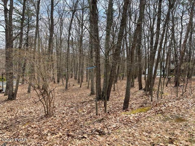 111 Maple Ridge Rd, Milford, PA 18337 (MLS #21-1423) :: McAteer & Will Estates   Keller Williams Real Estate