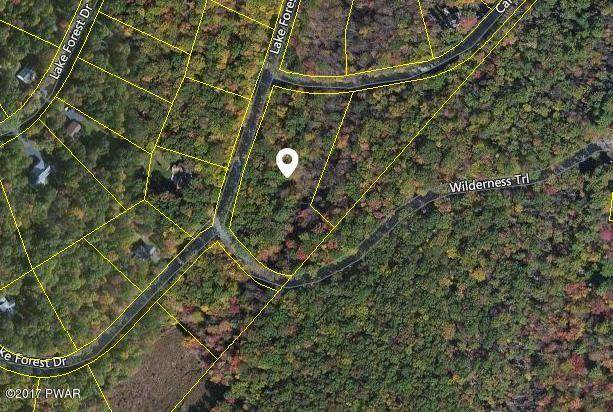 Lot 683 Lake Forest Dr, Dingmans Ferry, PA 18328 (MLS #21-2208) :: McAteer & Will Estates | Keller Williams Real Estate
