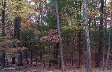 Ridge View Rd, Lackawaxen, PA 18435 (MLS #21-69) :: McAteer & Will Estates | Keller Williams Real Estate