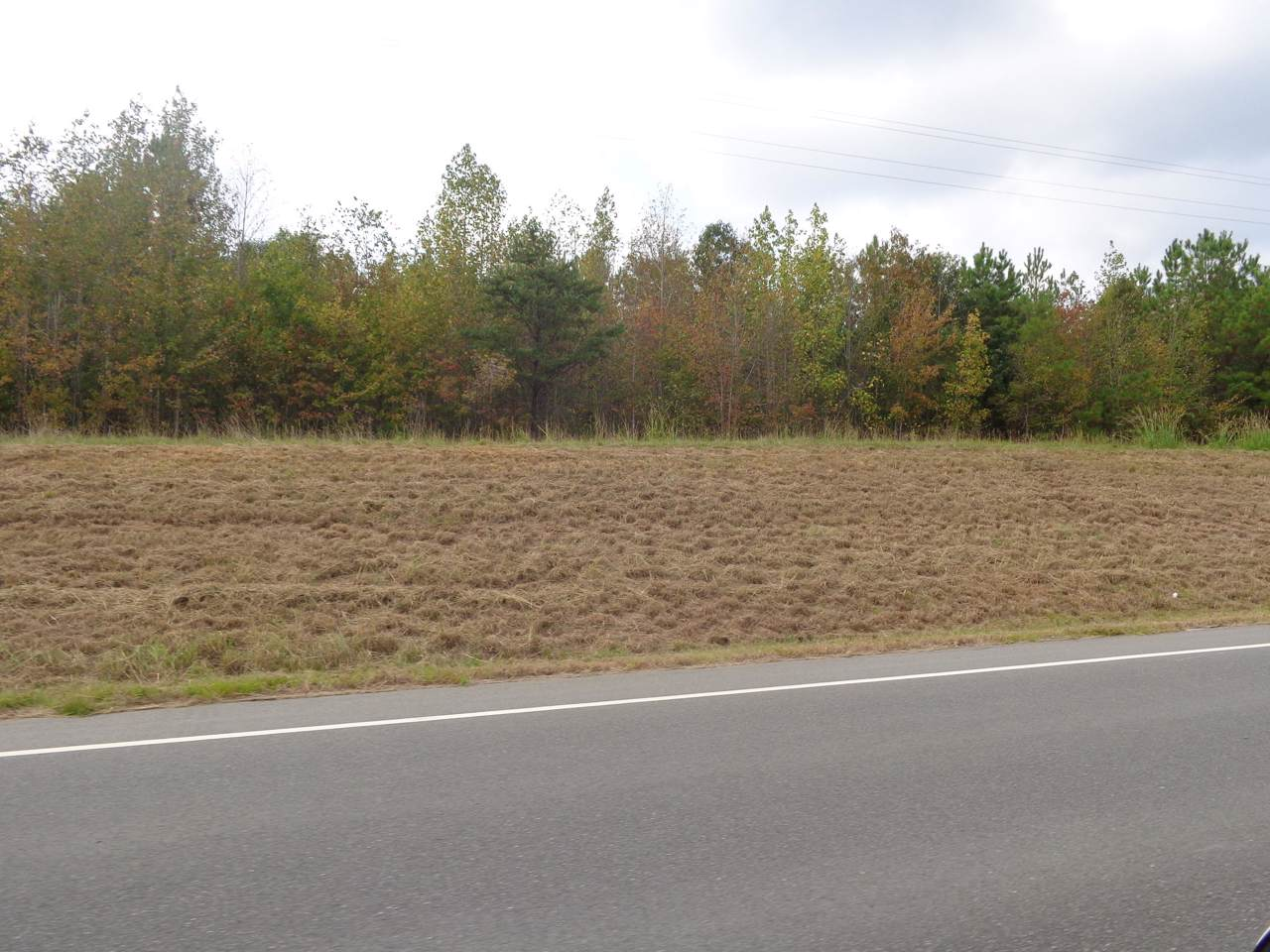 Tbd Old Woods Road - Photo 1