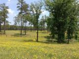 254 Pelham Trail - Photo 3