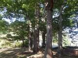 509 Mount Carmel Road - Photo 47
