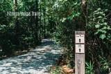 550 Grande Pines Vista - Photo 5