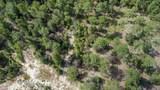 491 Grande Pines Vista - Photo 2
