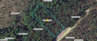 Tbd Raccoon Run, Wagram, NC 28396 (MLS #179876) :: Pinnock Real Estate & Relocation Services, Inc.
