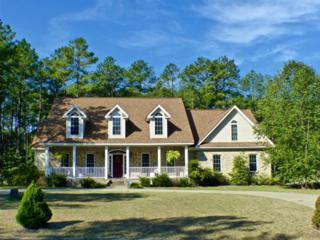 15940 Lovegrass Lane, Wagram, NC 28396 (MLS #179931) :: Pinnock Real Estate & Relocation Services, Inc.