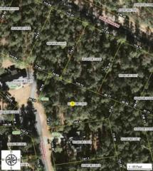 28921 Honeysuckle Court, Wagram, NC 28396 (MLS #180176) :: Pinnock Real Estate & Relocation Services, Inc.