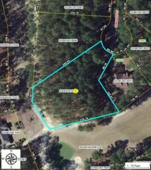 38 Loblolly Court, Wagram, NC 28396 (MLS #181887) :: Pinnock Real Estate & Relocation Services, Inc.