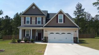 165 Almond Drive, Carthage, NC 28327 (MLS #182008) :: Pinnock Real Estate & Relocation Services, Inc.