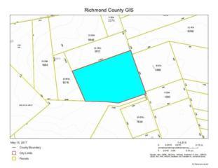 Tbd Ponderosa, Hamlet, NC 28345 (MLS #182063) :: Pinnock Real Estate & Relocation Services, Inc.