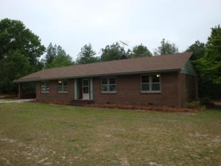 3167 Hwy 220 North, Ellerbe, NC 28338 (MLS #182101) :: Pinnock Real Estate & Relocation Services, Inc.