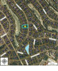 50 Mcmichael Drive, Pinehurst, NC 28374 (MLS #182146) :: Pinnock Real Estate & Relocation Services, Inc.