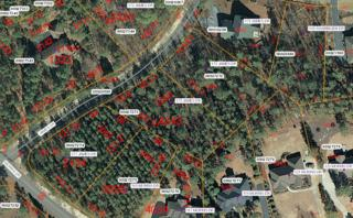 175 James Drive, West End, NC 27376 (MLS #182191) :: Pinnock Real Estate & Relocation Services, Inc.