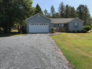 515 Ivan Rd, Jackson Springs, NC 27281 (MLS #182207) :: Pinnock Real Estate & Relocation Services, Inc.