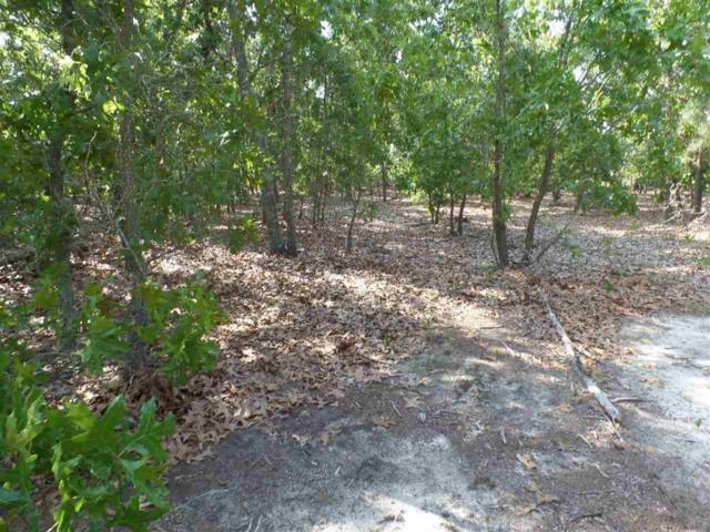 185 Pinelands Vista, Foxfire, NC 27281 (MLS #179159) :: Weichert, Realtors - Town & Country