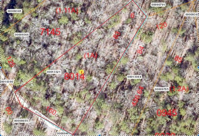 Lot 83 Appaloosa Lake Dr, Carthage, NC 28327 (MLS #180325) :: Weichert, Realtors - Town & Country