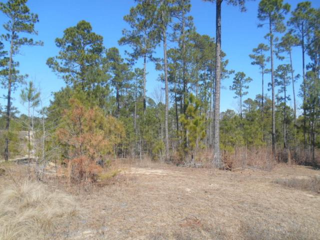 Tbd Kenrick Point, Rockingham, NC 28379 (MLS #180395) :: Weichert, Realtors - Town & Country