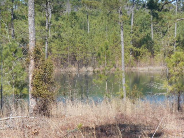 Tbd Kenrick Point, Rockingham, NC 28379 (MLS #180406) :: Weichert, Realtors - Town & Country