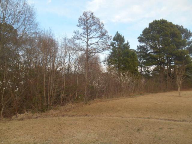 Tbd Bluebird Court, Rockingham, NC 28379 (MLS #180408) :: Weichert, Realtors - Town & Country