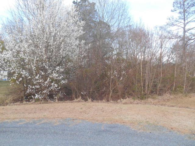Tbd Bluebird Court, Rockingham, NC 28379 (MLS #180427) :: Weichert, Realtors - Town & Country